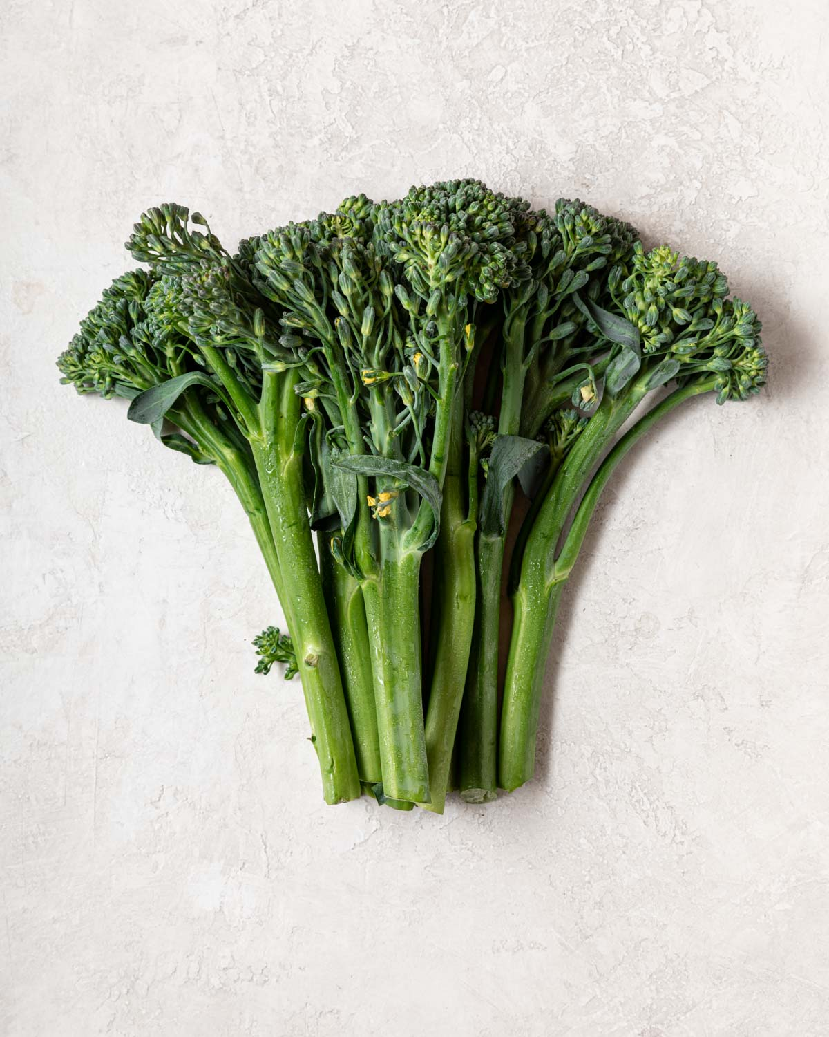 A bunch of broccolini sits on a neutral background.
